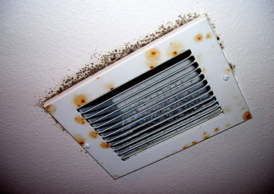 mold-on-air-vent